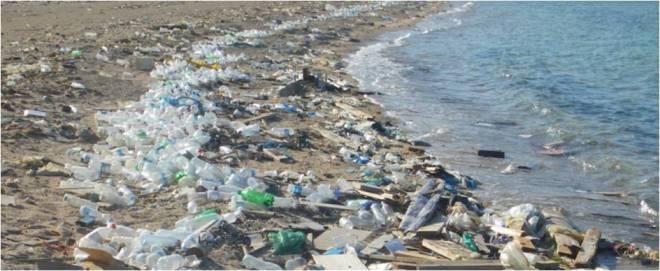 Plastic_Bottle_Pollution.jpg